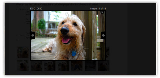 A jQuery Flickr Feed Plugin